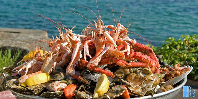 Soirée «Bretagne et Fruits de Mer»